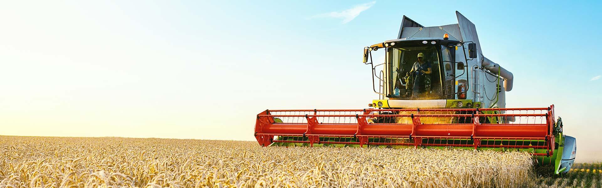 Productor global de agroquímicos.