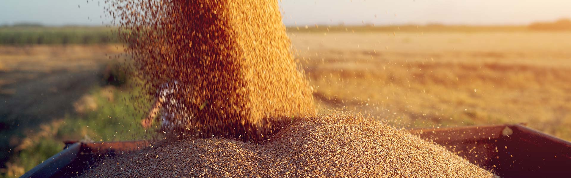 Comprometidos con la agricultura española.